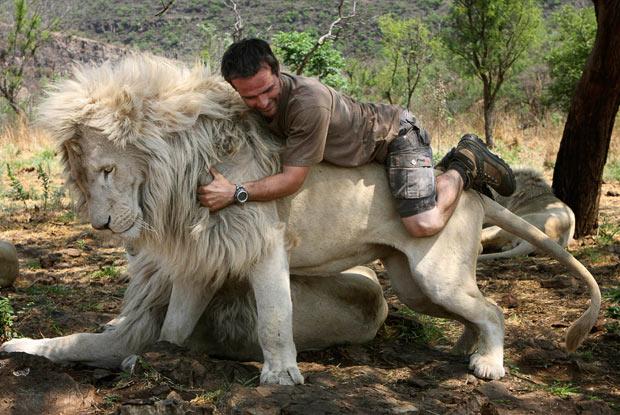 Возвращение Белого Льва