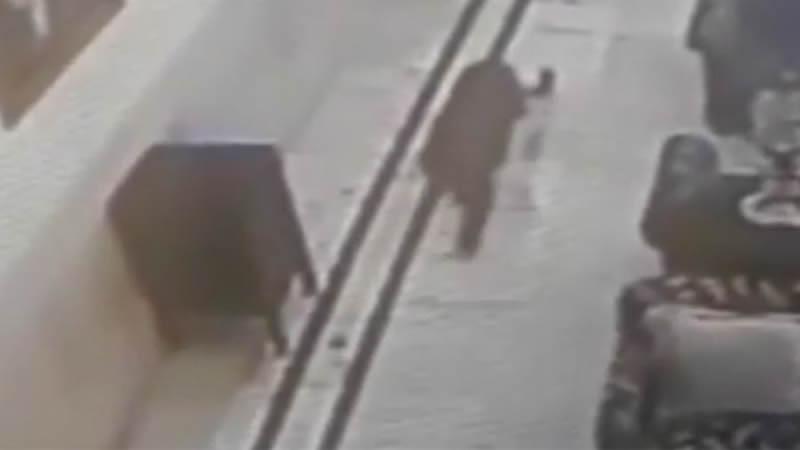 В Индии пантера забрела в холл отеля